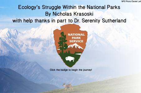 Ecology's Struggle Within The National Parks